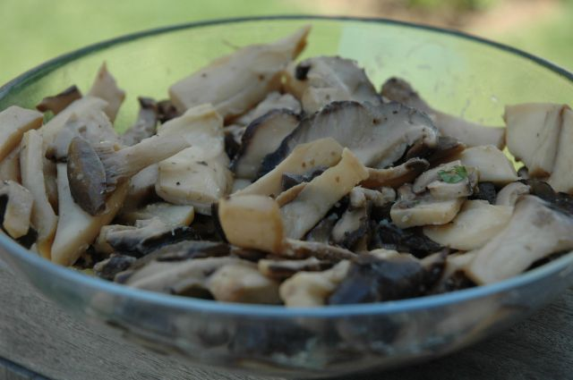 Sauteed Mixed Wild Mushrooms